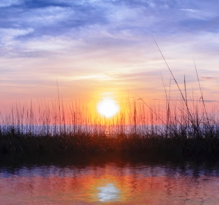Golden Rainbow Sunrise Sawgrass Sand Dunes
