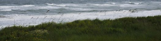 cropped-waves-of-storm-copy1.jpg