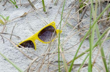 Sunglasses Grass